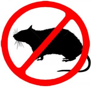 anti_rodent