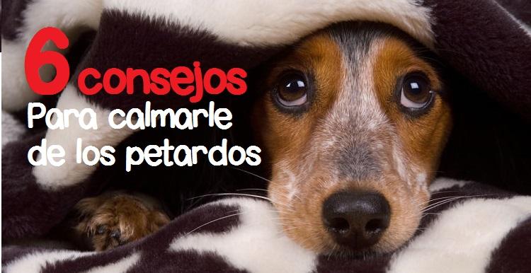 perro_triste